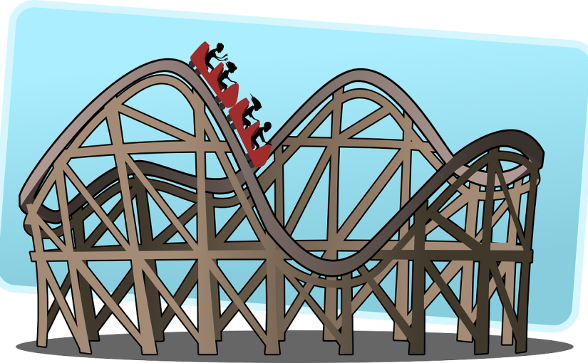 Riding the Rollercoaster of Entrepreneurship